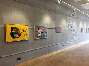 altered states exhibtion casd march april 2019